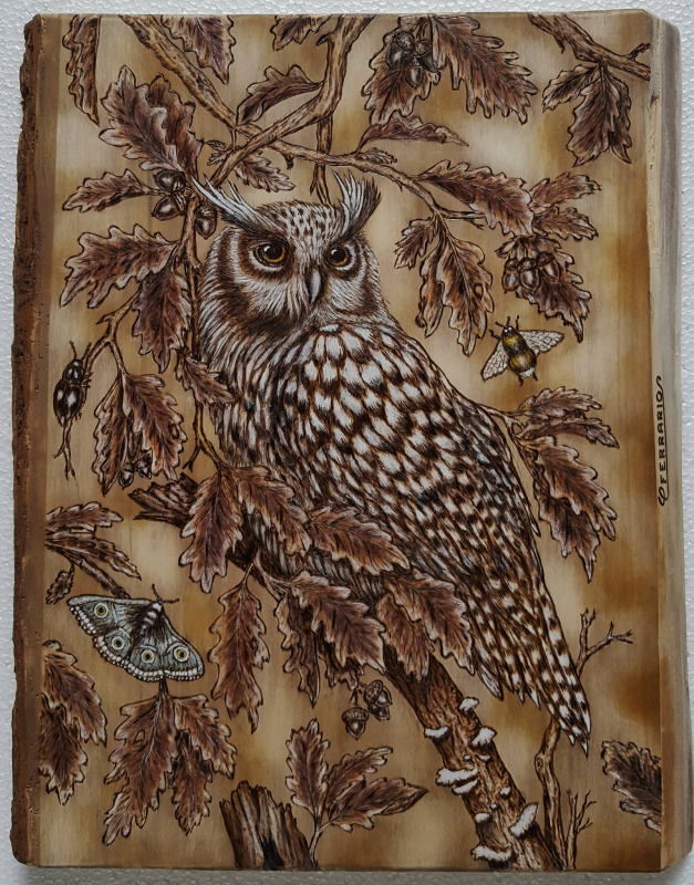 Owl Pyrography