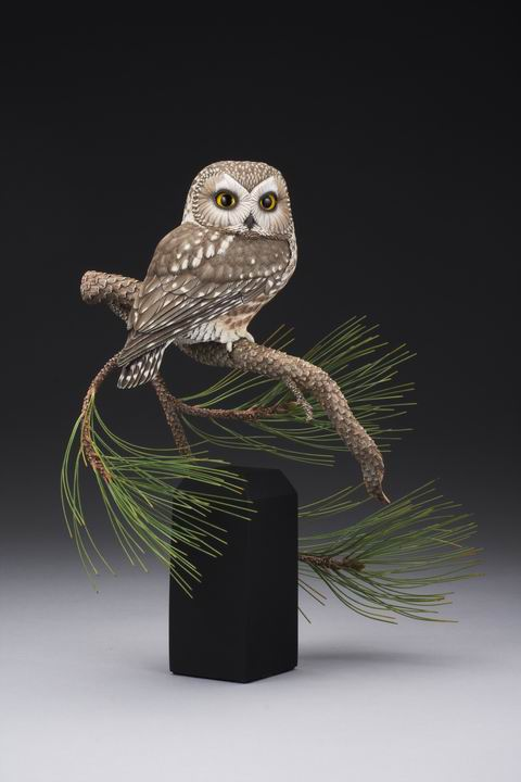 Northern Saw-whet Owl sculpture