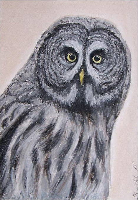 painting of a Great Grey Owl