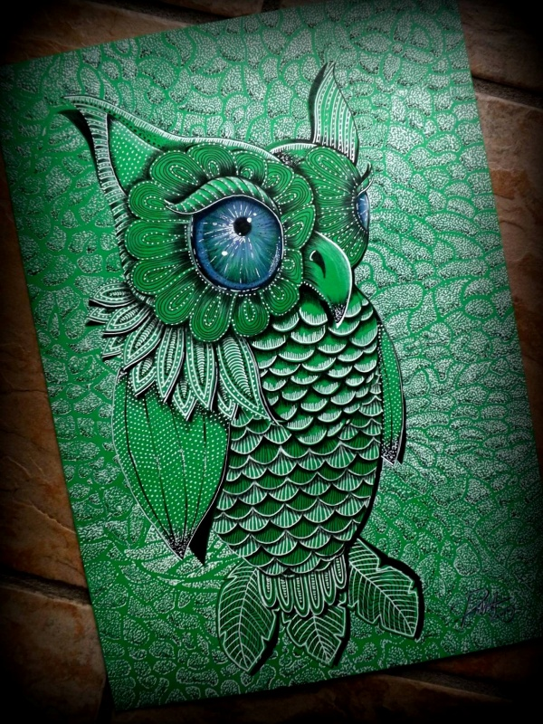 Green Owl drawing