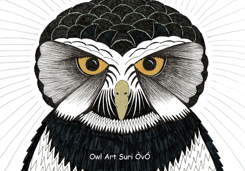 Spectacled Owl drawing