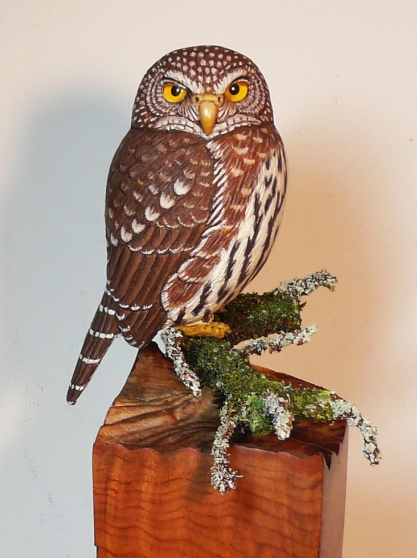 Northern Pygmy Owl carving
