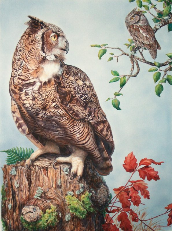 Great Horned Owl and Western Screech Owl painting