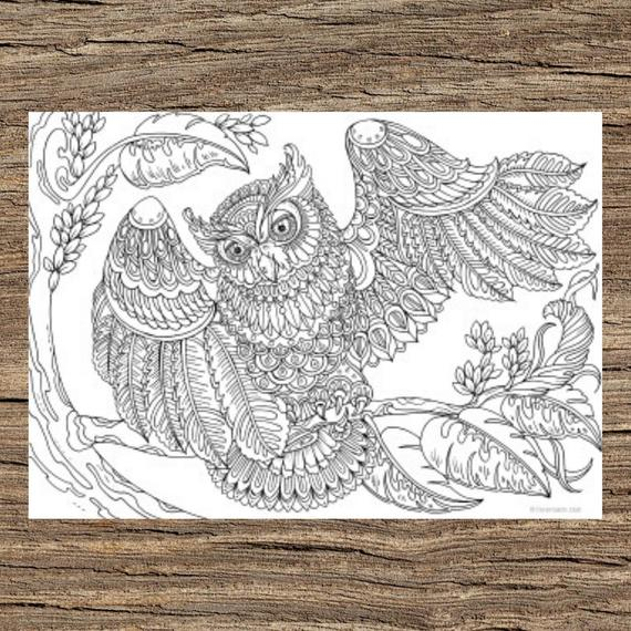 Owl With A Twist Printable Adult Coloring Page From Favoreads Coloring Book Pages For Adults And Kids Coloring Sheets Coloring Designs By Anastasia The Owl Pages